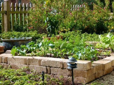 Raised veggie beds are integrated into garden