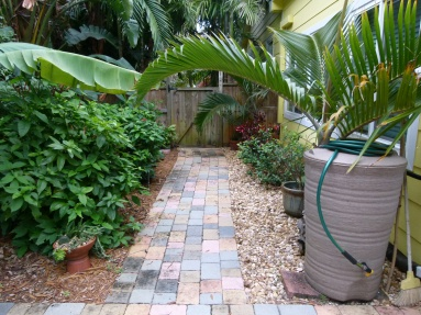 Pavers guide your way around our home. Did you spot one of our water barrels?