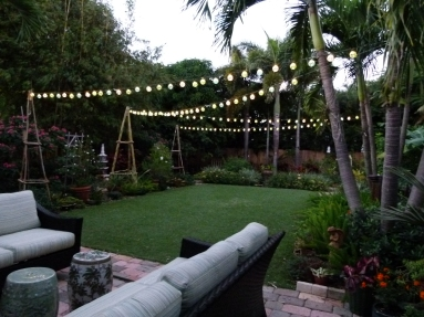 Party Lights!