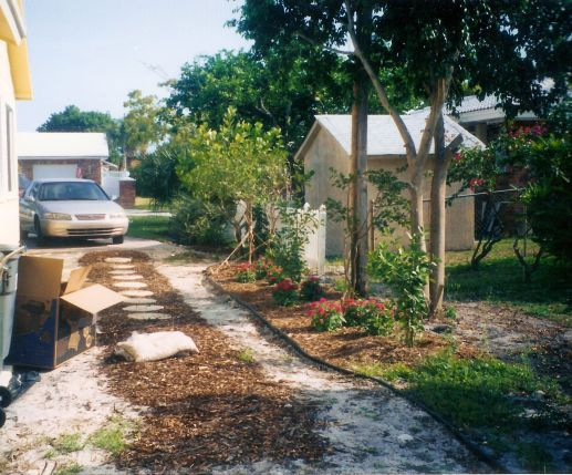 Side yard after construction.